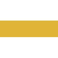 no-account-casino-logo-casinopolis